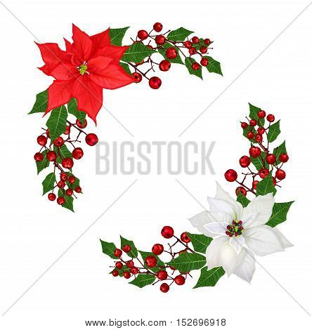 Christmas wreath garland. Flowers poinsettia red white crimson berries green leaves. Isolated on white background.