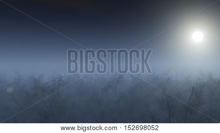 Aerial Of Winter Forest In Mist At Moonlight.