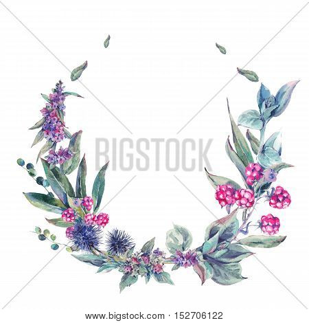 Watercolor floral wreath, vintage design element with thistles, stachys, blackberries and wildflowers, botanical natural watercolor round frame isolated on white background