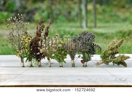 Various dried herbs collected in bunches on a light wooden surface closeup. Garden on background.