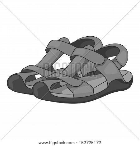 Sandals icon. Gray monochrome illustration of sandals vector icon for web