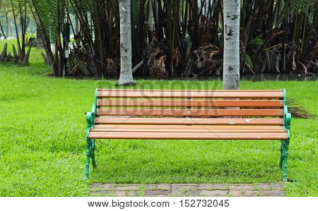 Bench In The Park On Daytime