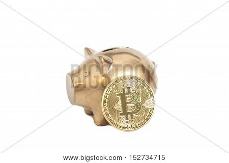 Golden Piggy bank with One Golden Bitcoin coin (new virtual money ) on a white background