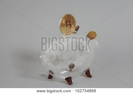Glass Piggy bank with One Golden Bitcoin coin (new virtual money ) on a gray background