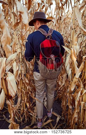 Adventurous man wearing hat and backpack strolling around the corn field