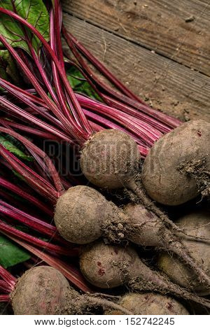 Beetroot with stems