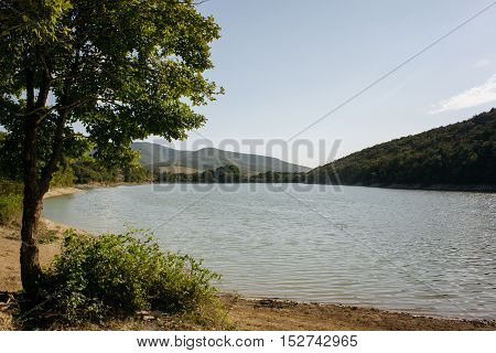 beautiful mountain lake with a tree in the foreground