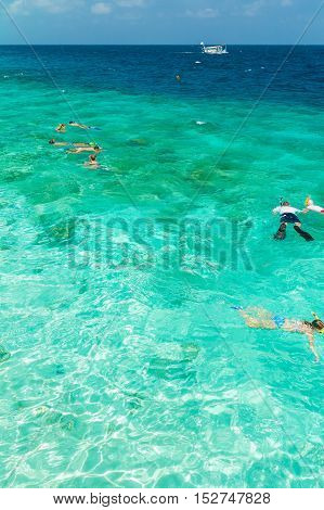 Tourists Involved In Snorkeling In Shallow Water Near Tropical Island, Maldives