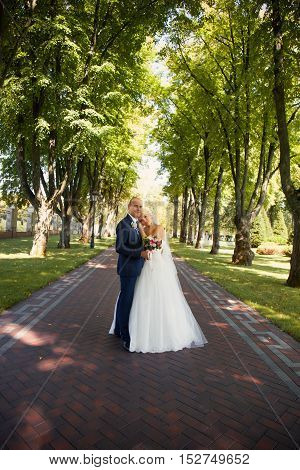 Newlyweds tenderly embraced in the park standing in the alley