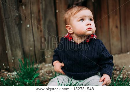Beautiful Baby Boy Sitting On Green Grass, 9Months At The Wood Background