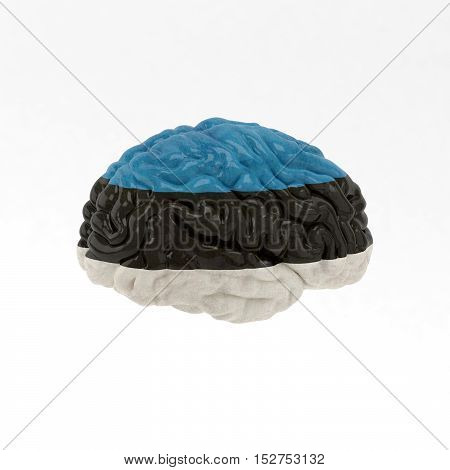 Estonia. Flag on Human brain. 3D illustration.