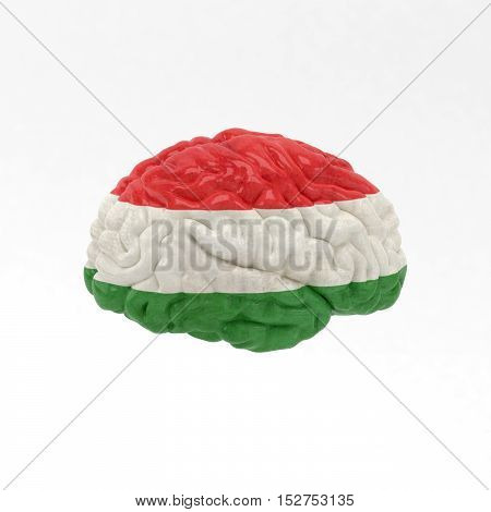 Hungary. Flag on Human brain. 3D illustration.