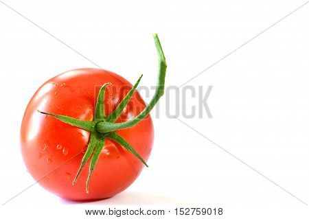 close up from tomato on white background
