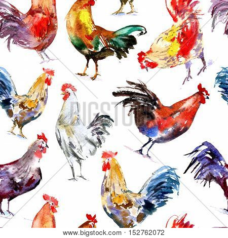 Seamless pattern with rooster.Sketch.Symbol of the new year 2017.Watercolor hand drawn illustration.White background.