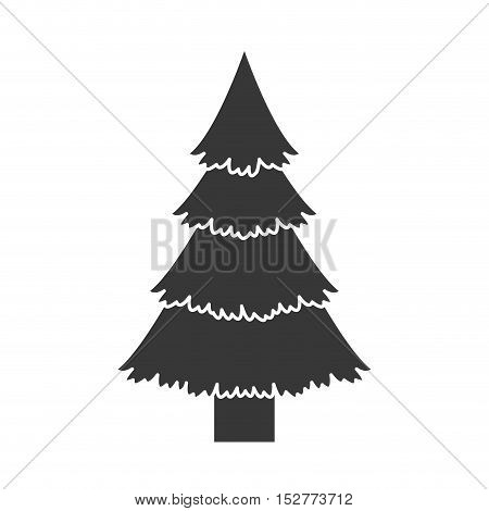 pine tall nature tree icon silhouette. vector illustration