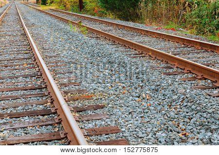 Railway Track Beautiful Autumn Forest Bright Warm