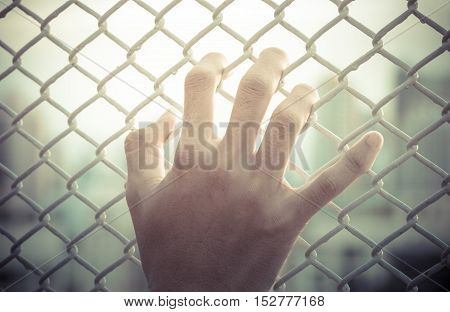 hand holding on chain fence, sunlight background