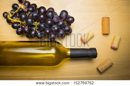 The empty bottle of wine with corkscrews and glass of coconut on wooden background