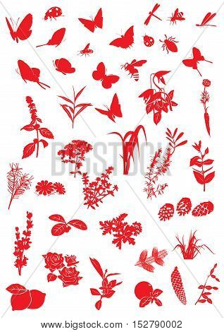 Insects and plants - Vector illustration - EPS .