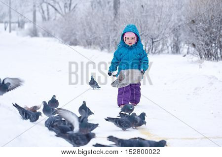 Little girl on a walk in a winter park. Baby feed the pigeons. Childhood Joy.