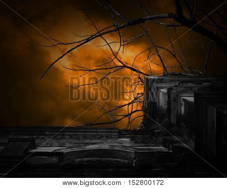 Spooky ancient building with full moon and bird Halloween background