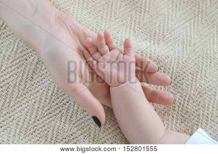 little baby hand in two mom's hand