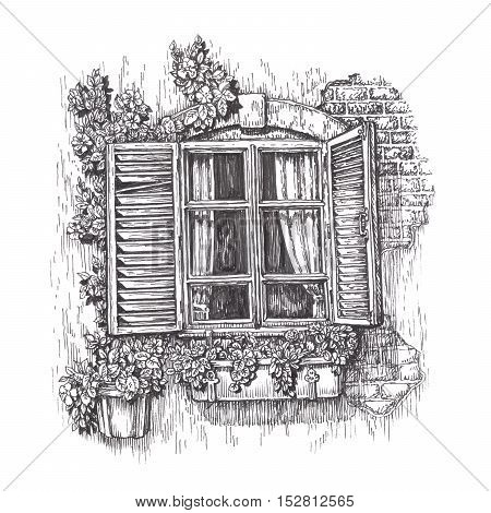 Window with open wooden shutters. Vintage sketch isolated on white background