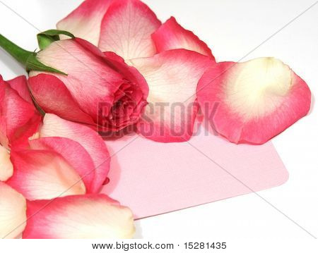 Pink card surrounded by rose petals, add your own text.