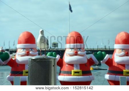 Seagull in the front. A bunch of inflated Santa Claus are decorating the Darling Harbour area in downtown Sydney during the Christmas holidays in the background.