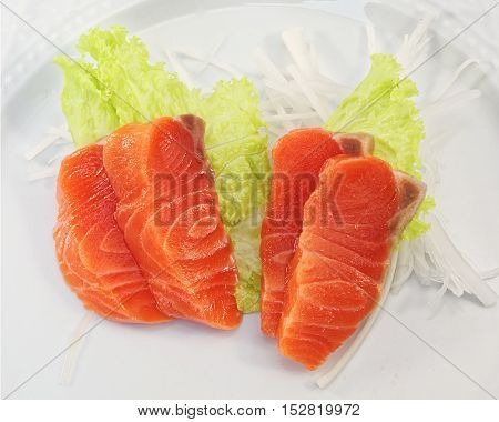 Fresh Salmon Sashimi on white plate background