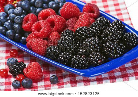 Assorted Fresh berries on a checkered tablecloth