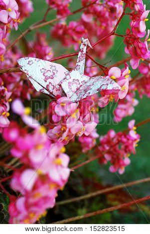 Japanese Paper Crane Origami in Nature Flower Flight