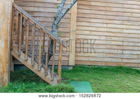 Wood Walk Path