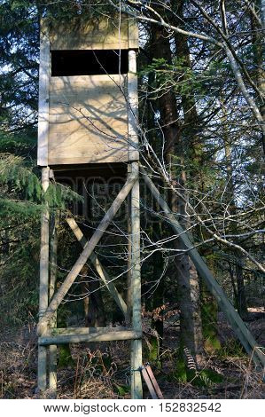 Mirador of wooden hunting under trees in forest