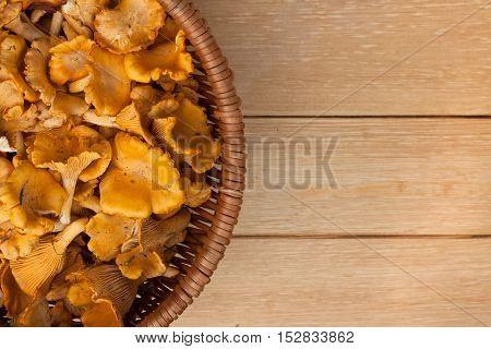 Mushrooms Chanterelle. Close Up Edible Mushrooms Chanterelle In Wicker Basket On Wooden Table. Copyspace.