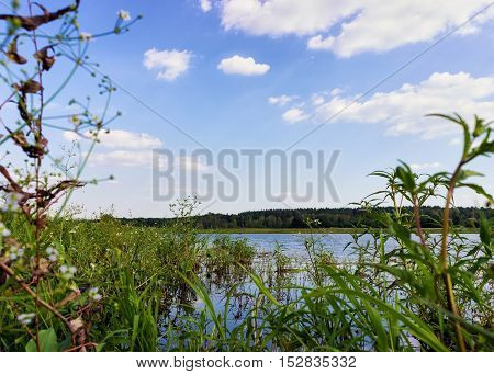 Landscape with Blue sky, Forest and Lake