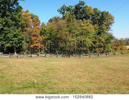 large area of green grass surrounded by wood fence and row of trees