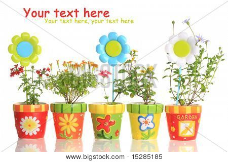 Colorful painted pots with pretty flowers.