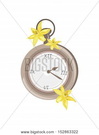 Antique Vintage Pocket watch isolated Vector illustration