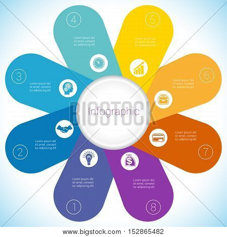 Flower Camomile infographic template colourful petals eight positions.