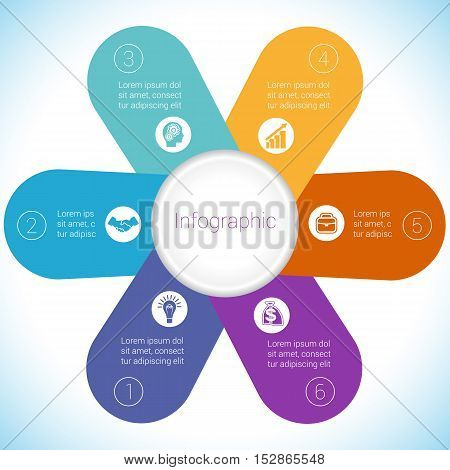 Flower Camomile infographic template colourful petals six positions.