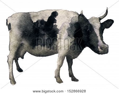 watercolor sketch of cow on white background