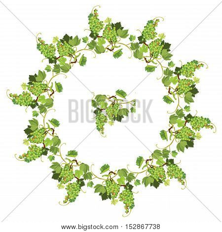 Round Grapes frame and repeated element for wine labels or menu design. Isolated on white background
