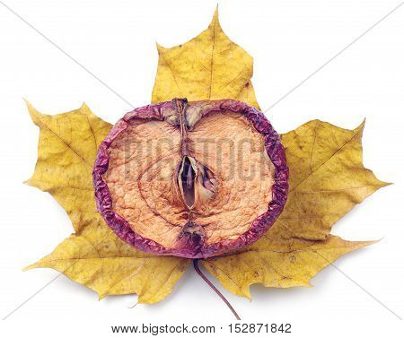Half of dried apple and yellow leaf on white background