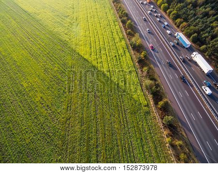 Green cultivated fields by highway in Netherlands