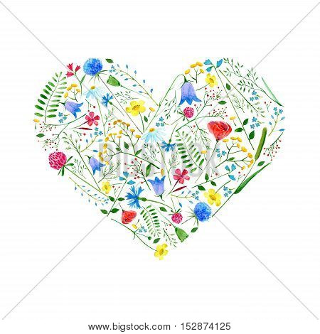 Heart from wild flowers on a white background.Botanical floral composition with buttercup,clover, poppy,cornflower,bell,tansy,chamomile and berry.Watercolor hand drawn illustration.