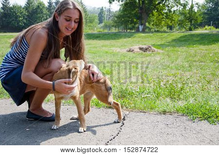 young woman with pretty smiling happy face and long brunette hair playing with puppy dog on green grass