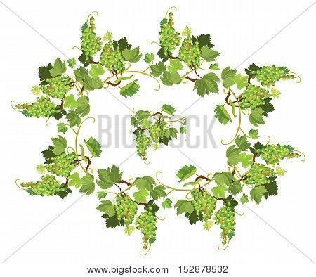Oval Grapes frame and repeated element for wine labels or menu design. Isolated on white background