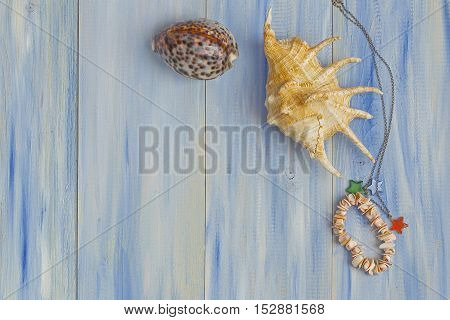 Sea Shell On A Blue Wooden Background