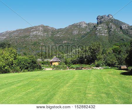 Kirstenbosch Botanical Gardens, Cape Town South Africa 12aa